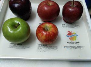 Apple Halwa