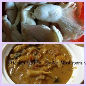 Oyster Mushroom Kurma